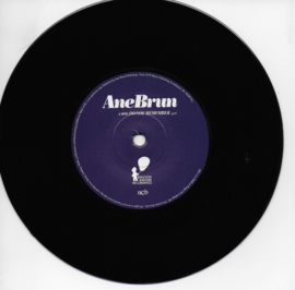 Ane Brun - Do you remember