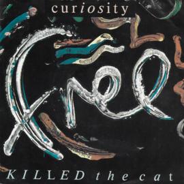 Curiosity killed the Cat - Free