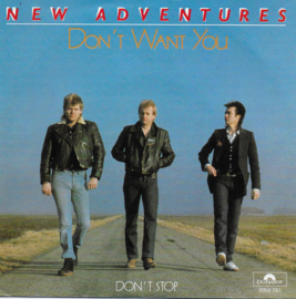 New Adventures - Don't want you