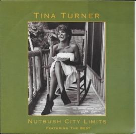 Tina Turner - Nutbush city limits (the 90's version)