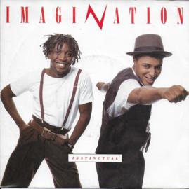 Imagination - Instinctual