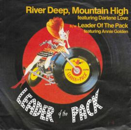 Darlene Love - River deep, mountain high