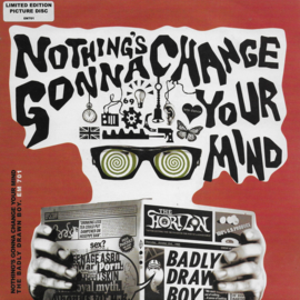 Badly Drawn Boy - Nothing's gonna change your mind (Limited edition picture disc)