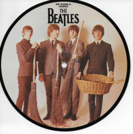 Beatles - We can work it out (Picture disc)