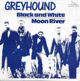 Greyhound - Black and white / Moon river