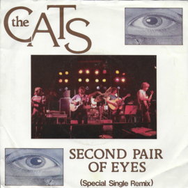 Cats - Second pair of eyes