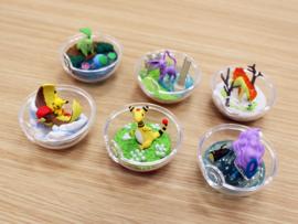 Pokémon Terrarium collectie 5 Suicune