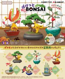 Pokémon Re-ment Bonsai hele set