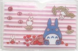 Pashoesje Totoro Stripes