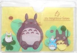 Pashoesje Totoro Friends