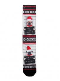 XPooos Socks, kerstsokken, Xmas Dear Santa 60097