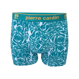 Pierre Cardin Heren Trunk | Boxershort Leaves Groen