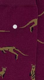 Alfredo Gonzales Socks | Kangeroe