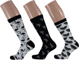 Apollo Tropical Black & White Socks | 3-Pack Giftbox | Maat 36-41