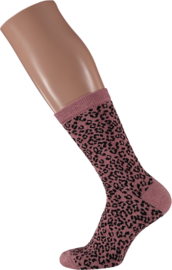 Sarlini Fashion Dames sokje Leopard Pink | Maat 36-41