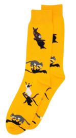 Alfredo Gonzales Socks Cat Orange