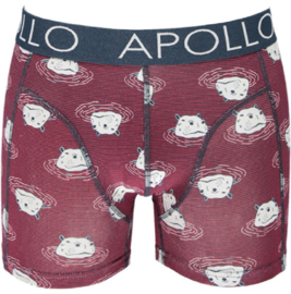 Apollo Heren boxershorts | 2-Pack Giftbox | Desert
