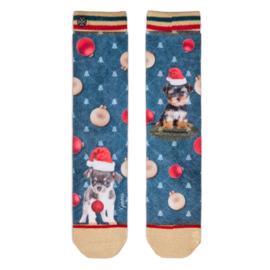 XPooos Socks, kerstsokken, Xmas Puppy Carol 70130