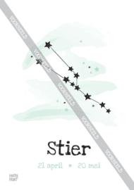 Stier poster