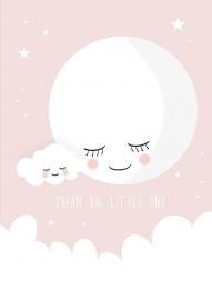 Poster roze dream big