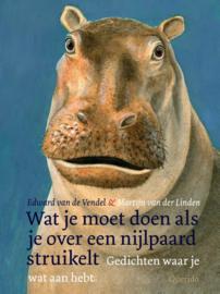 Wat je moet doen als je over een nijlpaard struikelt