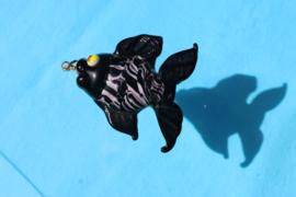 glas vis zwart
