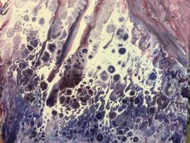 Paarse cellen