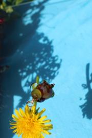 kraal van een klein uiltje