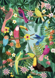 Poster Rainforest birds 50 x 70 cm