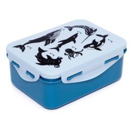 Lunchbox zeedieren - Petit Monkey