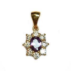 Hanger Strass kristal paars ovaal goud