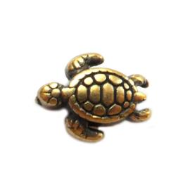 Bedel Schildpad Kraal