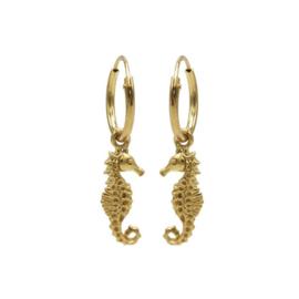 Oorbellen Zeepaardje goud
