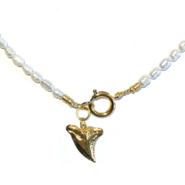 Ketting Zoetwaterparel Tand goud