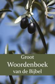 Groot Woordenboek van de Bijbel A-H - Eerste Deel - W. Moll; P.J. Veth; F.J. Domela Nieuwenhuis