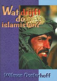 Wat drijft de islamisten?