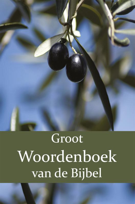 Groot Woordenboek van de Bijbel I-N - Tweede Deel - W. Moll; P.J. Veth; F.J. Domela Nieuwenhuis