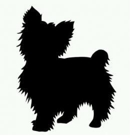 Hond-07
