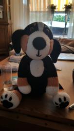 Sint Bernhard Hond