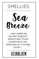 Geurbloem - Sea Breeze