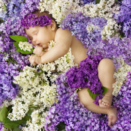Geurolie - Bedtime Baby