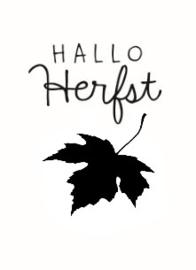 SmellieFlowers - Hallo Herfst