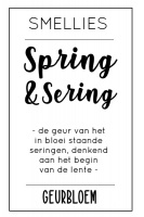 Geurbloem - Spring & Sering