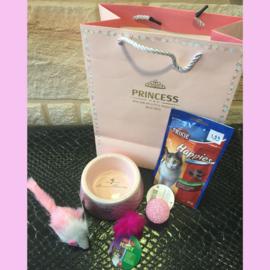Princess cadeauset kat