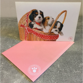 Studio Pets kaart puppy's