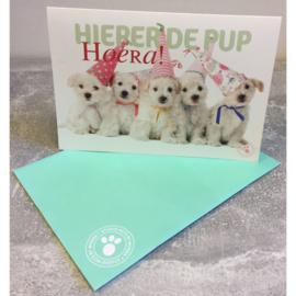 Studio Pets kaart Hieper de pup Hoera!