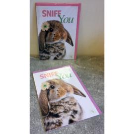 Studio Pets kaart Snife you