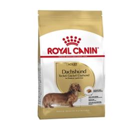 Royal canin dachshund/teckel adult 1,5kg