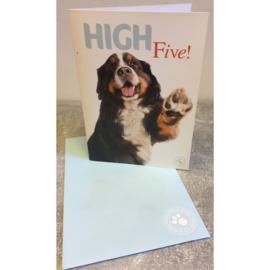 Studio Pets kaart High Five!