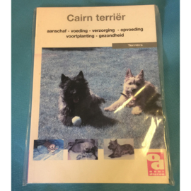 Boekje Cairn terrier